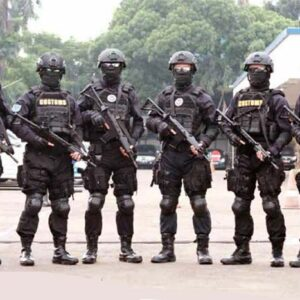 Special Enforcement Team (SET) Bea Cukai